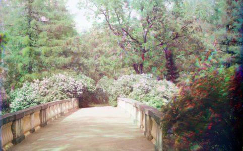 Плоский мост в Гатчинском парке. Фото С. М. Прокудина-Горского. 1908 г.