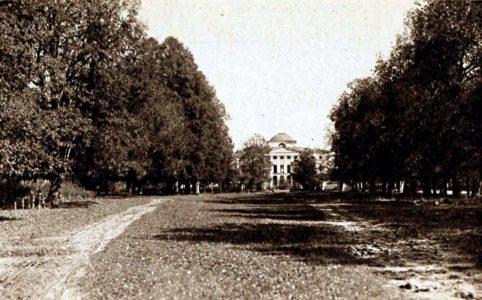 Ляличи. Аллея перед дворцом. Фото-тинто-гравюра нач. XX в.