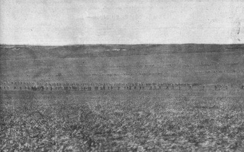 Июньское наступление. 1917 г.
