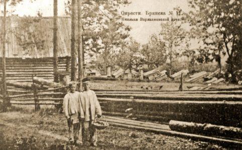 Варламовская дача в окрестностях Брянска. Фото с открытки конца XIX в.